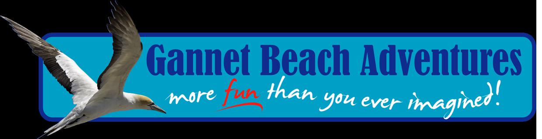 Gannet Beach Adventures - Hawke's Bay, New Zealand