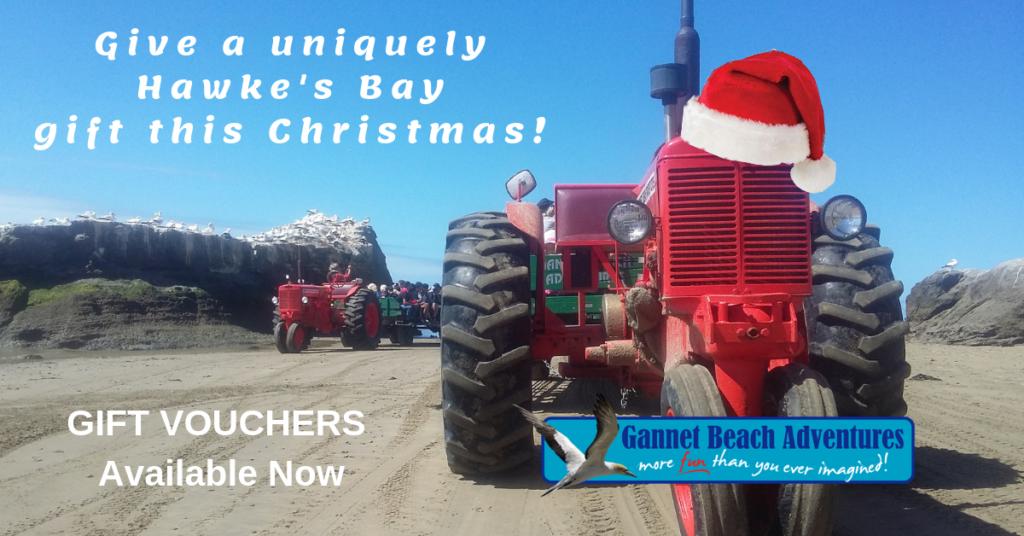 Gannet Beach Adventures Gift Vouchers